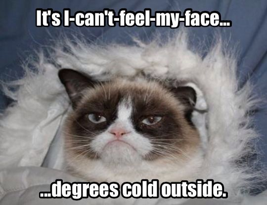 a970ea2a839843c4ce38e99e97d839b0 spring weather weather memes 114 best cold weather images on pinterest ha ha, funny stuff and