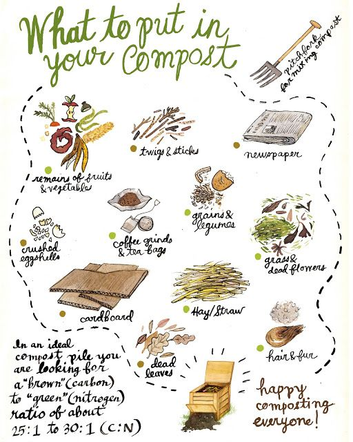 Composting Revisited from Robin Clugston