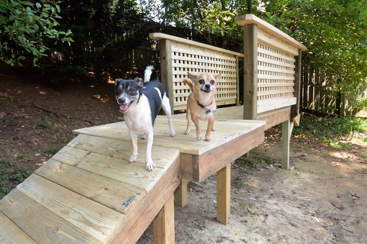 28 best dog playground images on Pinterest | Dog park, Dog ...
