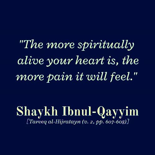 Ibn Qayyim al-Jawziyyah                                                       …