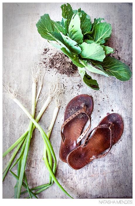 Food Portfolio by Natasha Mendes, via Behance