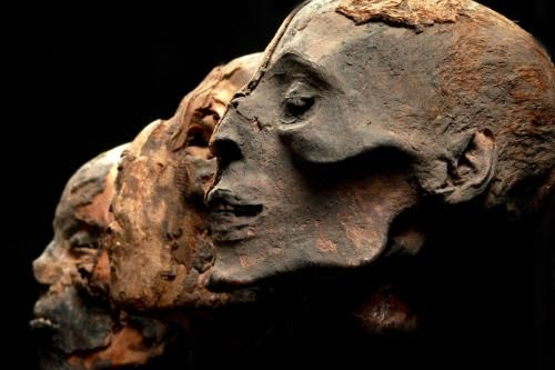 Egyptian Discoveries 2011   Egyptian mummy heads are part of the Mummies of the World exhibition ...