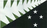 Dick Frizzell NZ Flag