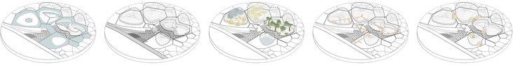 Galería de Primer Lugar en concurso público para el diseño del nuevo Tropicario del Jardín Botánico / Bogotá, Colombia - 10