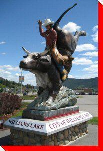 Heart of a Champion Bull Rider - Williams Lake British Columbia