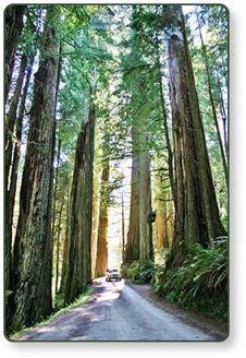 42 Best Lake Of The Woods Oregon Images On Pinterest