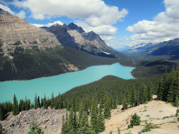 Peyto Lake near Bow Summit off the Icefields Parkway in Banff National Park, Alberta, nestles among some of the highest peaks in the Canadian Rockies.