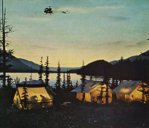 tent city at the amazingly gorgeous campground!: Friends, Favorite Places, Night Lights, Families Camps, Wonder Places, Outdoor Fun, Lakes, Tent Camps, Happy Campers