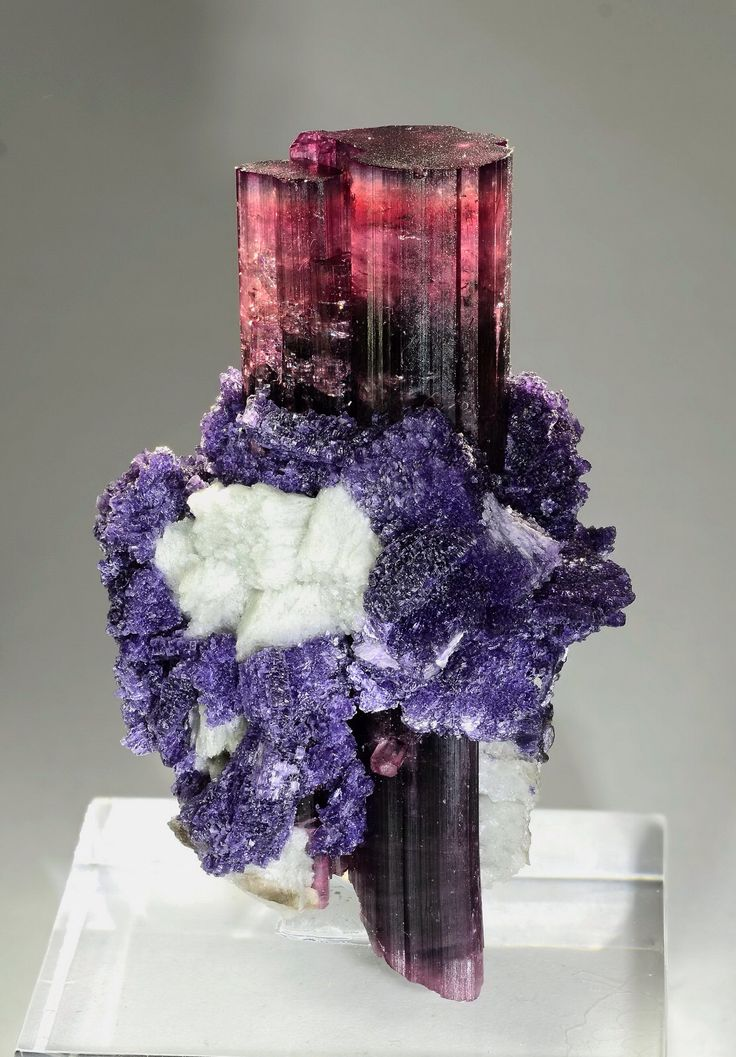 Tourmaline with Lepidolite and Feldspar - Oceanview Mine, Pala, San Diego Co., California