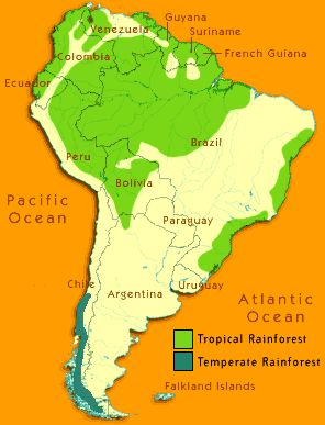 South america rainforests map of south americas rain forests in south america rainforests map of south americas rain forests in the amazon and in chile shows how endangered these green lungs of our earth are sciox Image collections