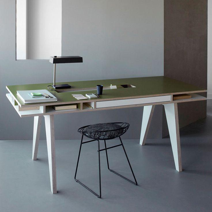 Schreibtisch Insekt Grün
