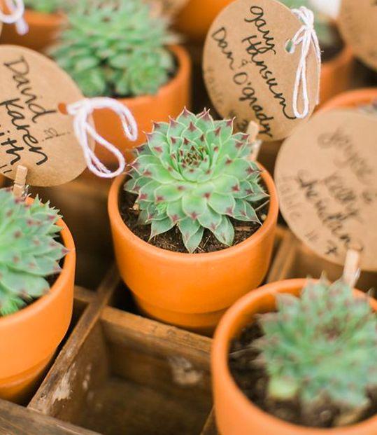 Bedankjes cactus bruiloft