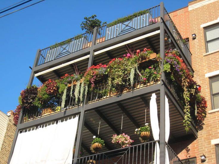 Vegetable Garden Ideas For Apartments balcony garden ideas - destroybmx