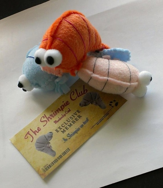 Cat Toy Ideas Fish
