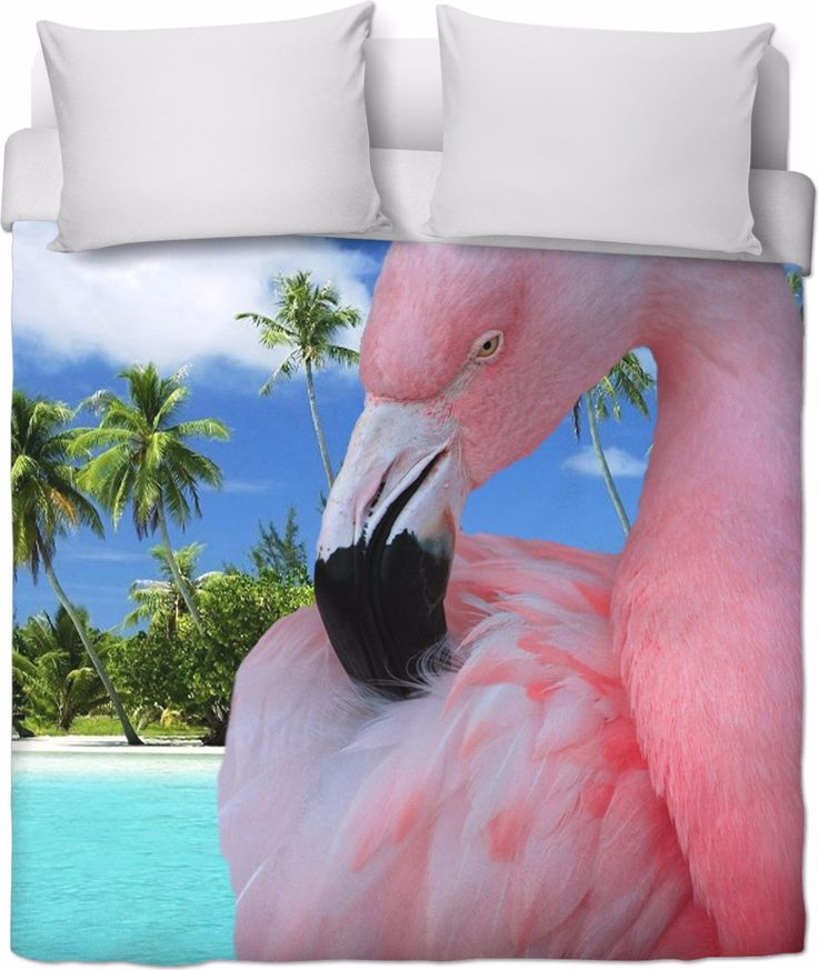 Check out my new product https://www.rageon.com/products/flamingo-and-beach-duvet-cover-1?aff=BWeX on RageOn!