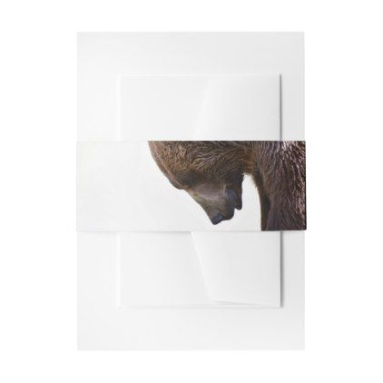 American Brown Grizzly Bear Animal Nature Wildlife Invitation Belly Band -nature diy customize sprecial design