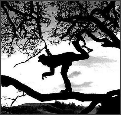 Anton Corbijn - Tom Waits