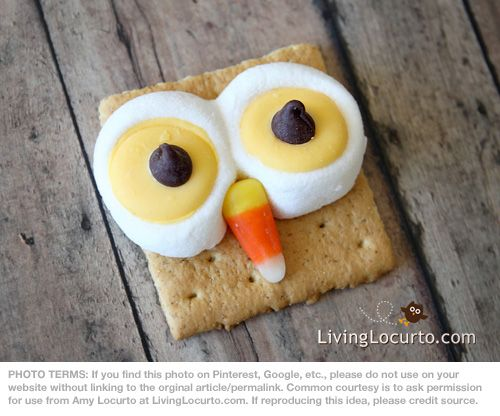 owl smores - could make with 2 graham crackers stuck together. @Jessica