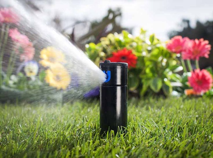 25+ Trending Home Irrigation Systems Ideas On Pinterest | Drip Irrigation,  Watering System For Garden And Garden Watering System