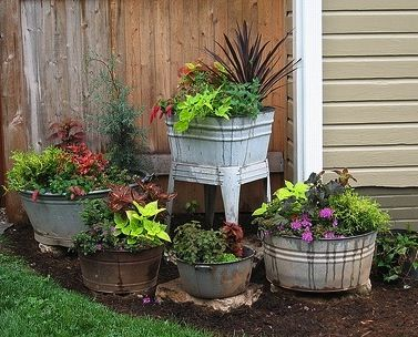 Container gardening ideas ...: Gardens Ideas, Container Gardens, Wash Tubs, Plants, Gardens Container, You, Flower Beds, Yards,  Flowerpot