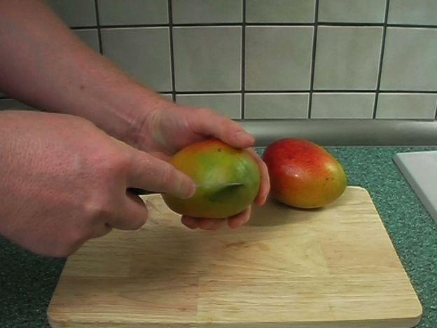 Mango Kern einpflanzen