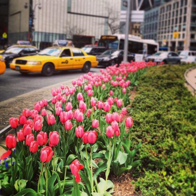294 Best New York City Images On Pinterest