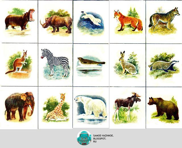 Állatkert lottó Szovjetunió A világ az állatok, 4 négy nyelven 1989-ben a régi…