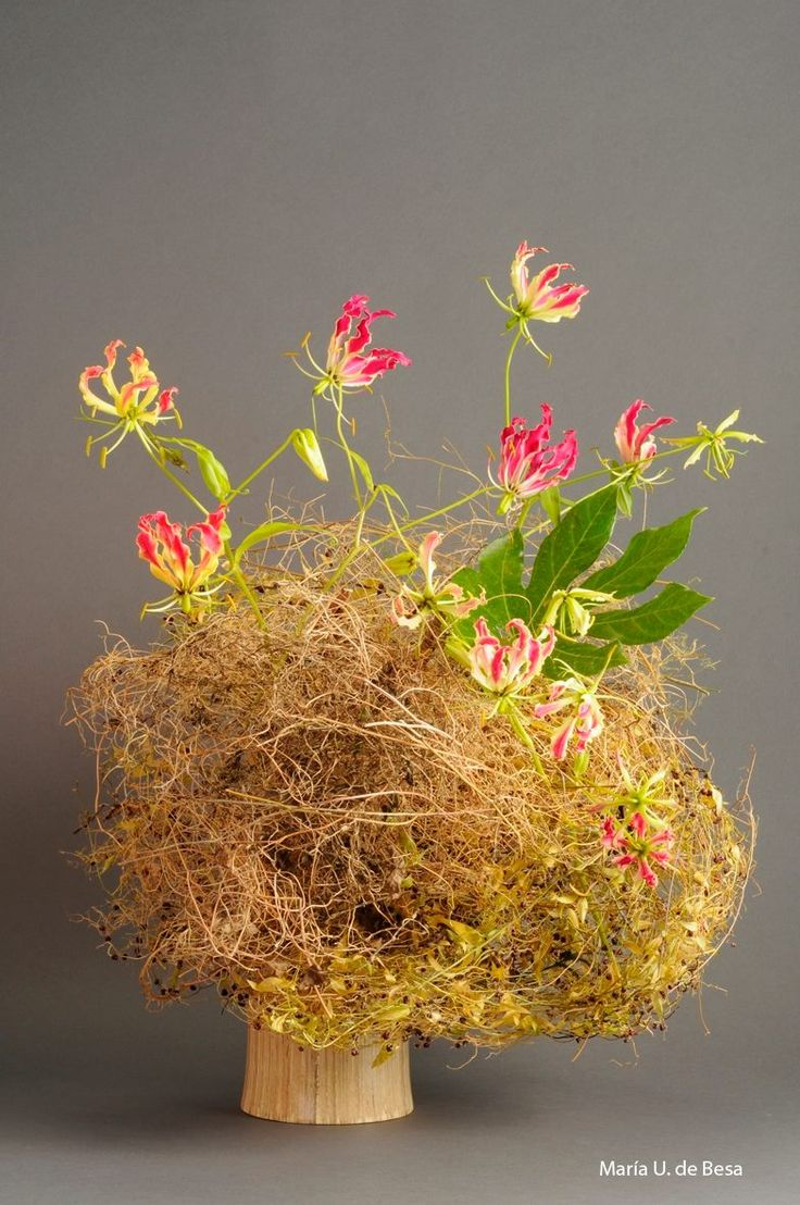 Best images about ikebana on pinterest