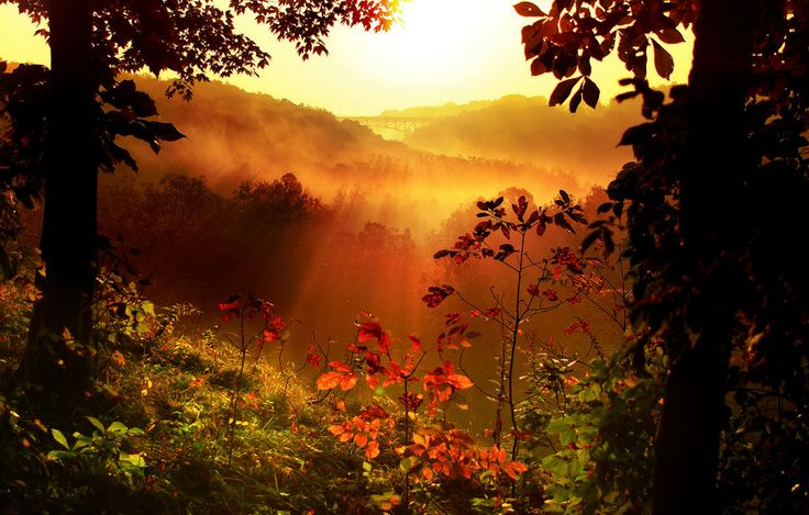 Dawn of Autumn by Robert Blair on 500px