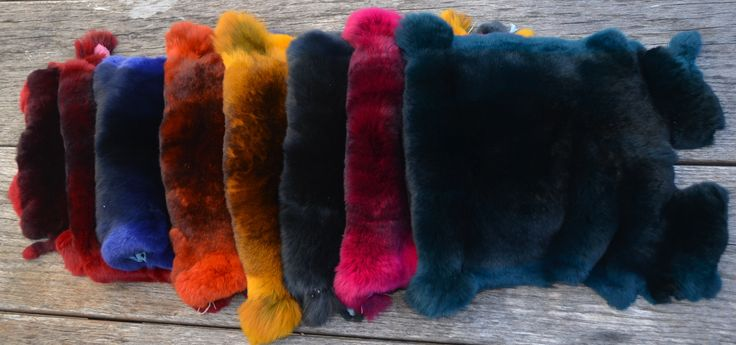 Wonderful colours of Rexcellence Rex furs! info@profurgroup.hu  www.rexcellence.hu