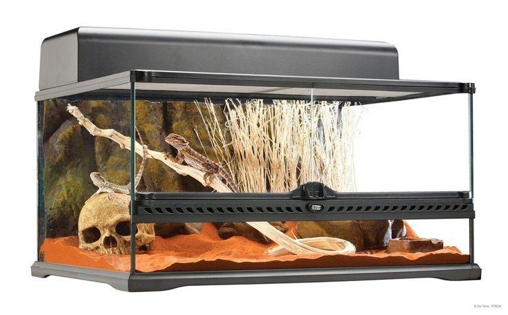 Terrario Cristal Mediano EXOTERRA Los Terrarios de Exo Terra son un hogar ideal para reptiles y anfibios y han sido diseñados por herpetólogos europeos.