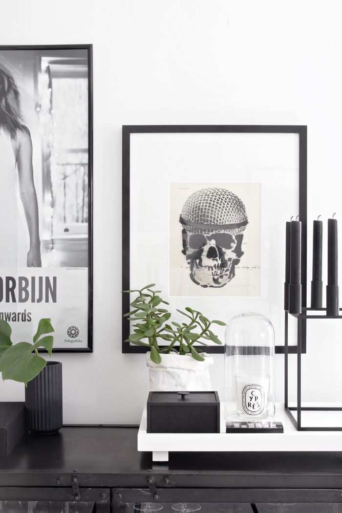 Still life, scull, black & white