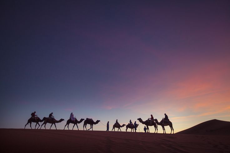 Пустыня Мерзуга.  Утреннее путешествие за рассветом на верблюдах.