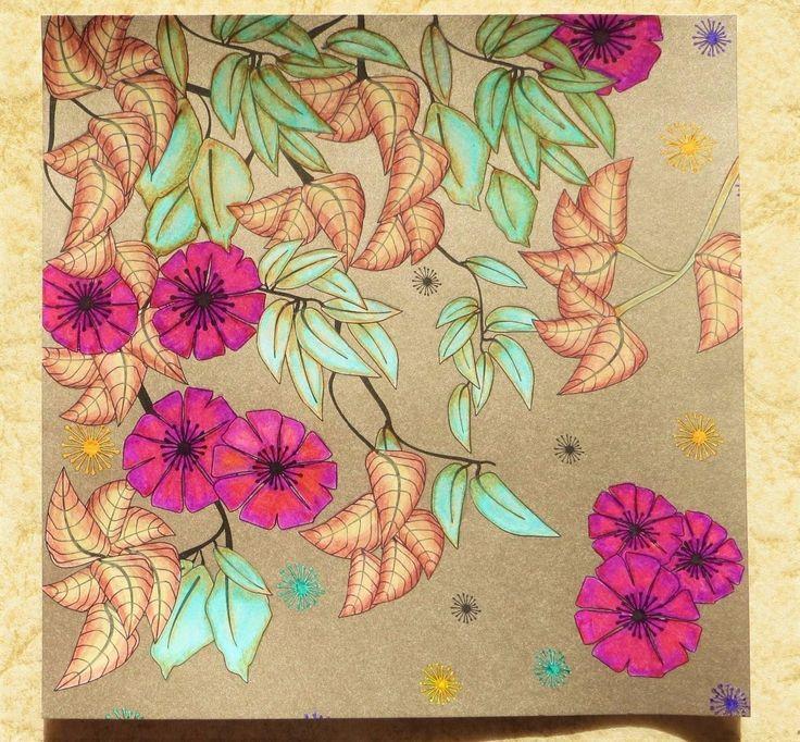 Amazon Magic Garden Color Dream Create 9780316312561