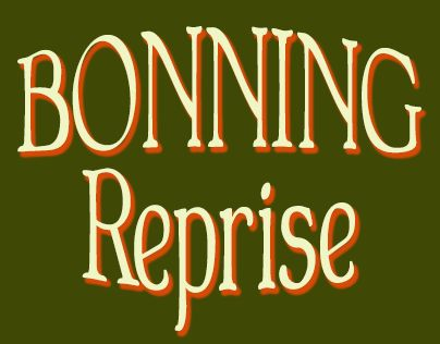 "Check out new work on my @Behance portfolio: ""BONNING Reprise"" http://be.net/gallery/40270117/BONNING-Reprise"