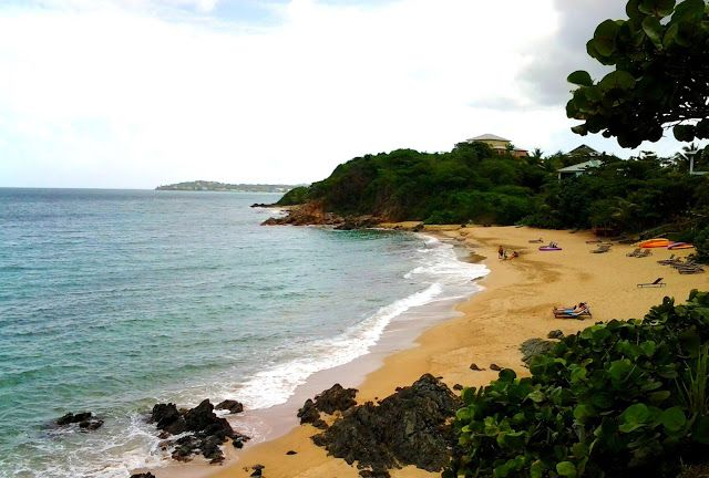 _: An Overlooked Island Called Vieques