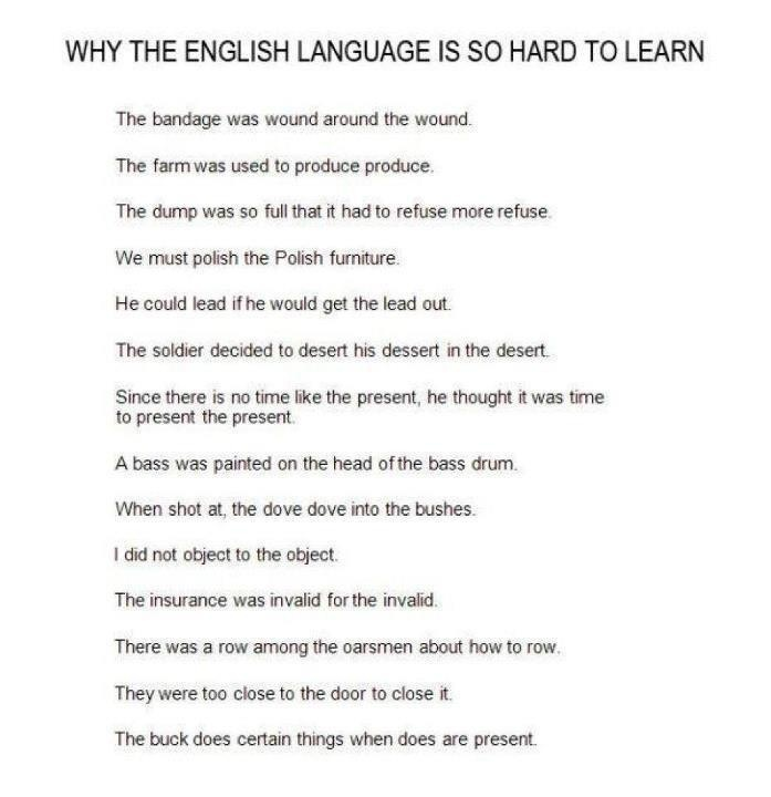 English As A Second Language Essay Examples | Kibin