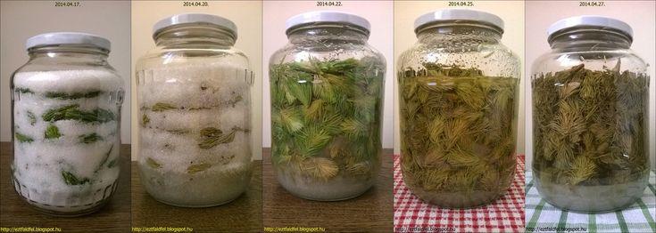 Még tavaly nyáron találtam az interneten több - nagyjából egyforma - fenyőrügyszirup receptet, és már akkor eldöntöttem, hogy ilyet én is akarok. Alapvetően háromféle módszert láttam, amelyből én most csak az egyik fogom bemutatni, a másikat talán majd jövőre. :-) Ez pedig a hidegen, főzés nélkül, minimális mennyiségű víz hozzáadásával készülő, csak cukrot és fenyőrügyeket tartalmazó módszer lesz, amelyet a pár napja közzétett orgonaszirup esetében is használtunk. A lényege ennek a…