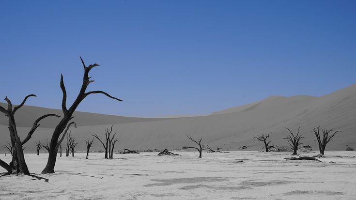 Bogactwa Namibii