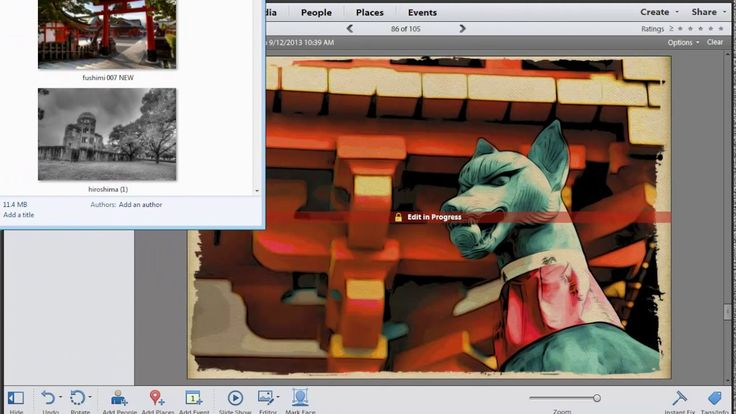 Photoshop Elements: All about the Organizer
