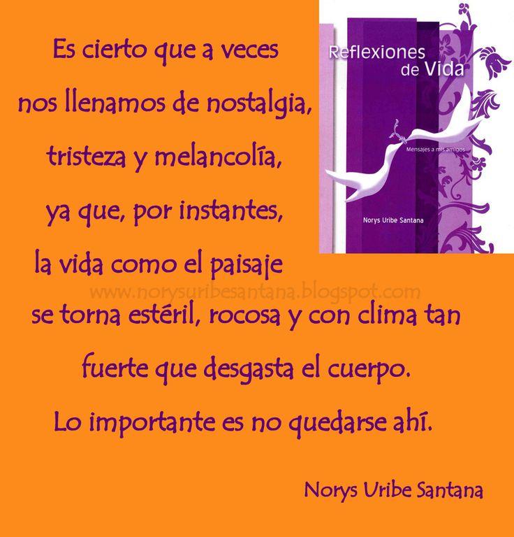 NORYS URIBE SANTANA: REFLEXIONES DE VIDA Nº 13 LA VIDA