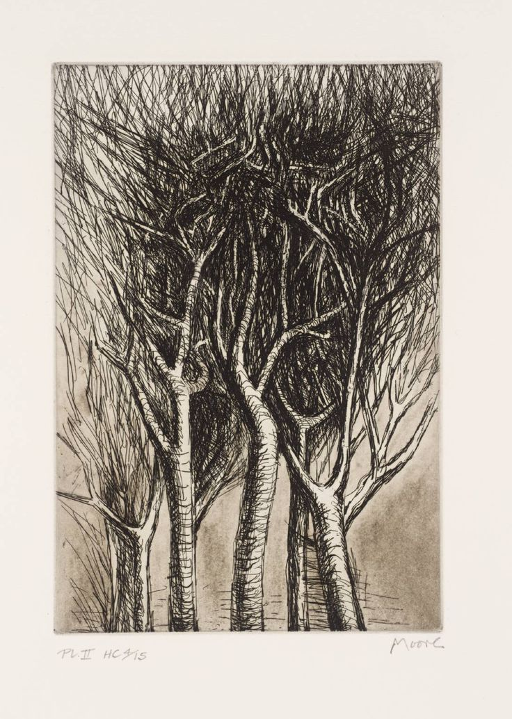 Henry Moore OM, CH, 'Trees II Upright Branches' 1979 The sketch is rough but detailed at the same times and the way he uses shading so that the white branches stand out against the black mess of leaves is striking.