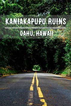 Hawaii's ancient ruins hidden in Oahu's jungle -Kaniakapupu Ruins One of the most underrated places in Hawaii!