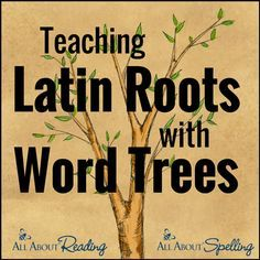 Teaching Latin Roots with Word Trees - All About Spelling