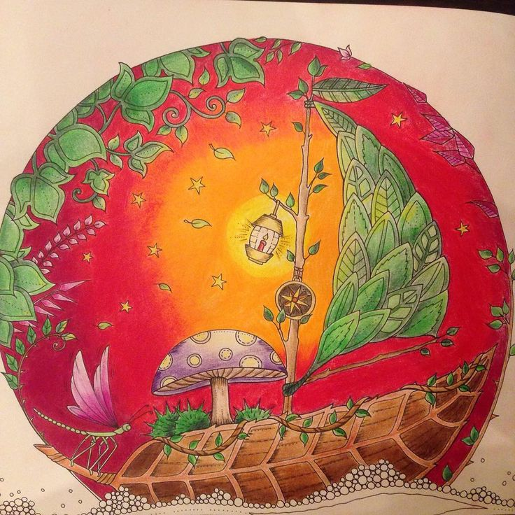 Pen And Watercolor Joanna Basford Johanna Secret Garden Coloring Books Adult Gel Pens Colored Pencils The Top Projects