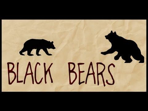 Living with Black Bears - Introduction