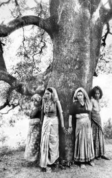 Essay On Chipko Movement In Kannada Language To English - image 3