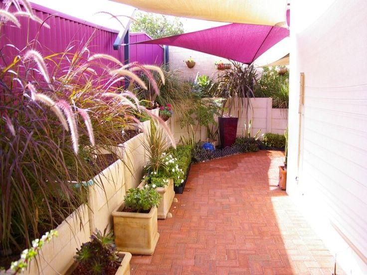 Ideas portfolio for side area - like the shade sail too. Photo of a low maintenance garden design from a real Australian home - Gardens photo 484240