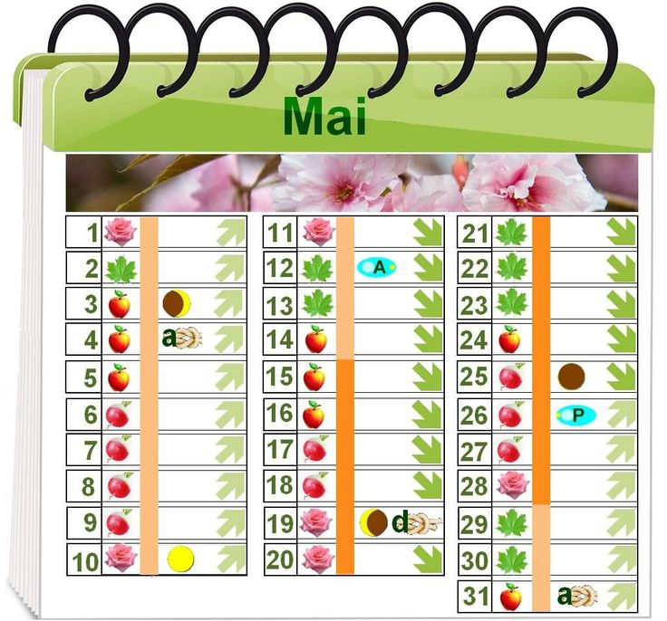 Calendrier lunaire jardinage rustica 28 images for Calendrier jardin