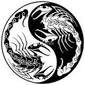 Image result for scorpion yin yang